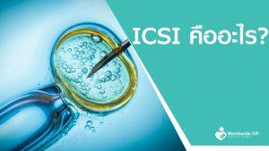 ICSI คือ ?