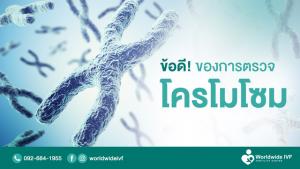 ข้อดีของการตรวจโครโมโซม การตรวจคัดกรองตัวอ่อน มีความสำคัญยังไง